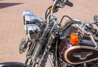 Продажа Harley-Davidson Softail Springer Heritage 95TH Anniversary Edition в Киеве