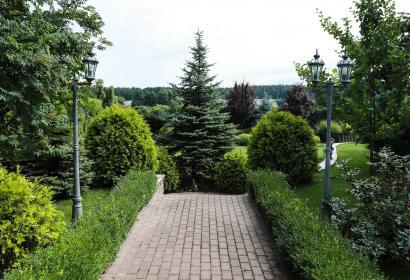 Аренда дома на берегу озера в Пуща-Водица